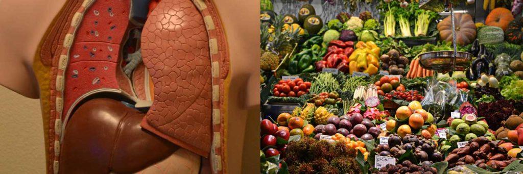 corona virus vegetable コロナ ウイルス 腸内環境 善玉菌