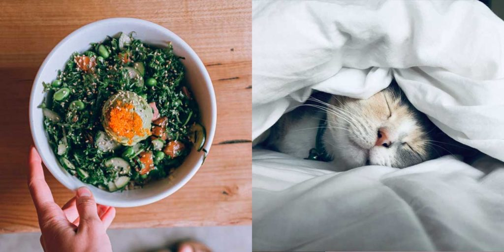 食事5割 睡眠3割 筋トレ2割