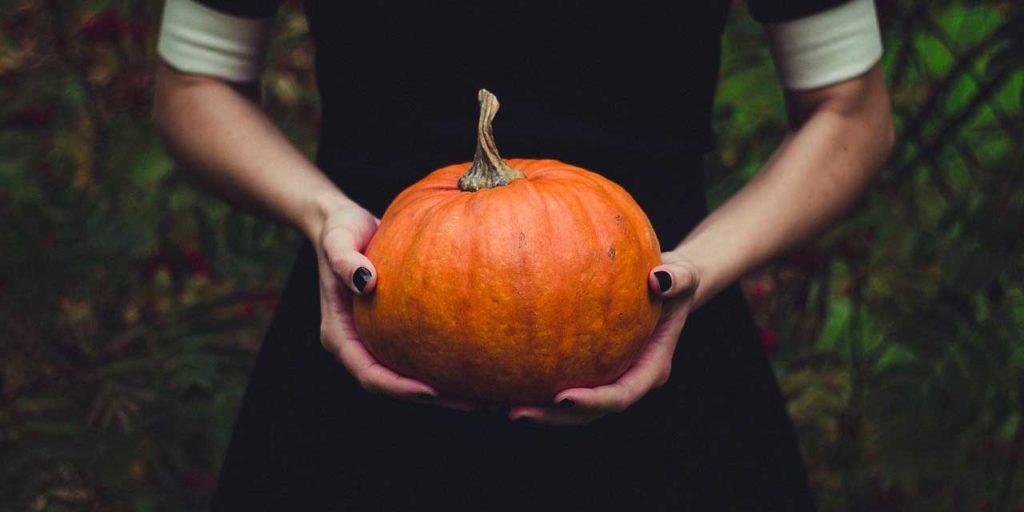 pumpkin かぼちゃ Camboja カンボジア