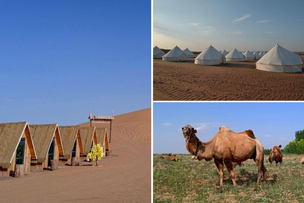 トンゴリ砂漠 腾格里沙漠 腾格里景区露营基地